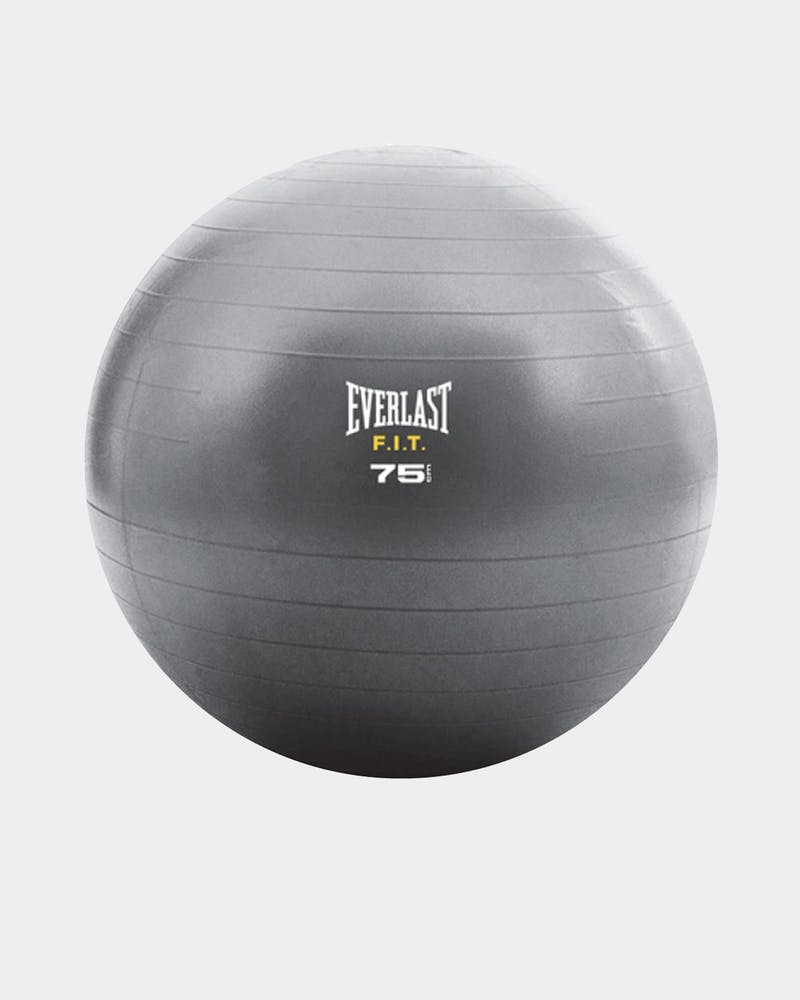 Everlast Unisex Core Strength Ball 75cm Grey