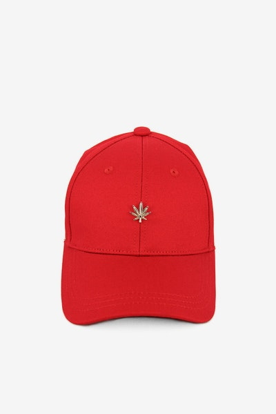 Hater Gold Cannabis Cap Red