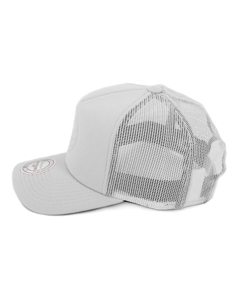 Brooklyn Nets D-m Trucker Grey