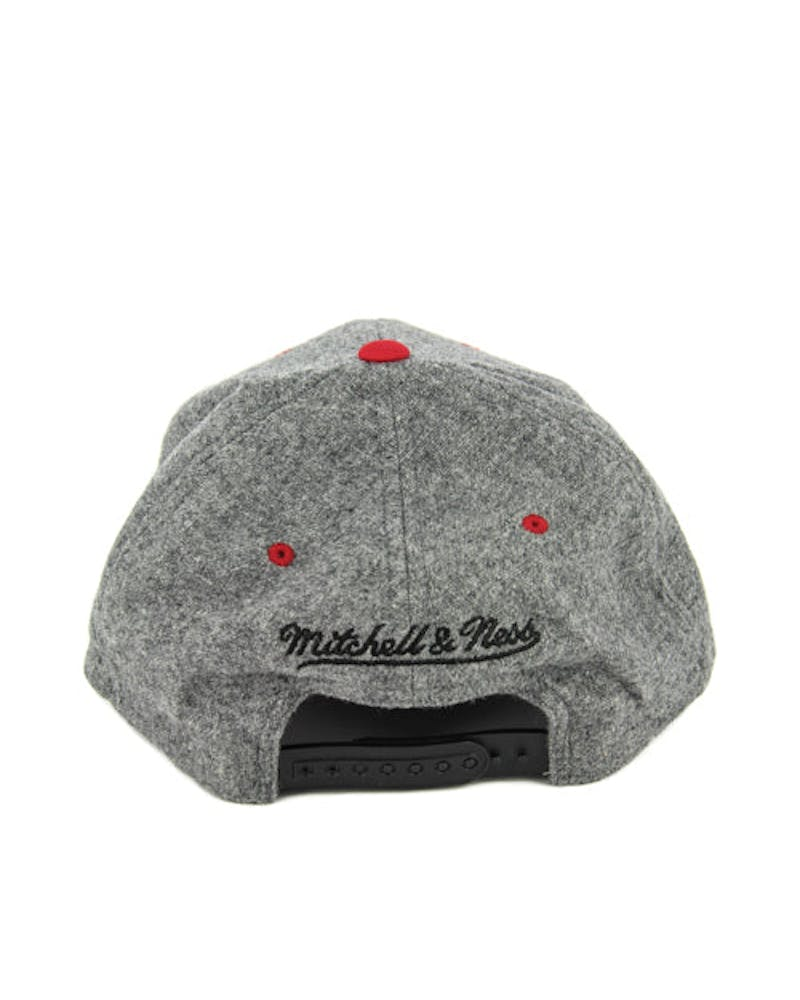 Raptors 2tone 110 Curved Snapback Grey/red