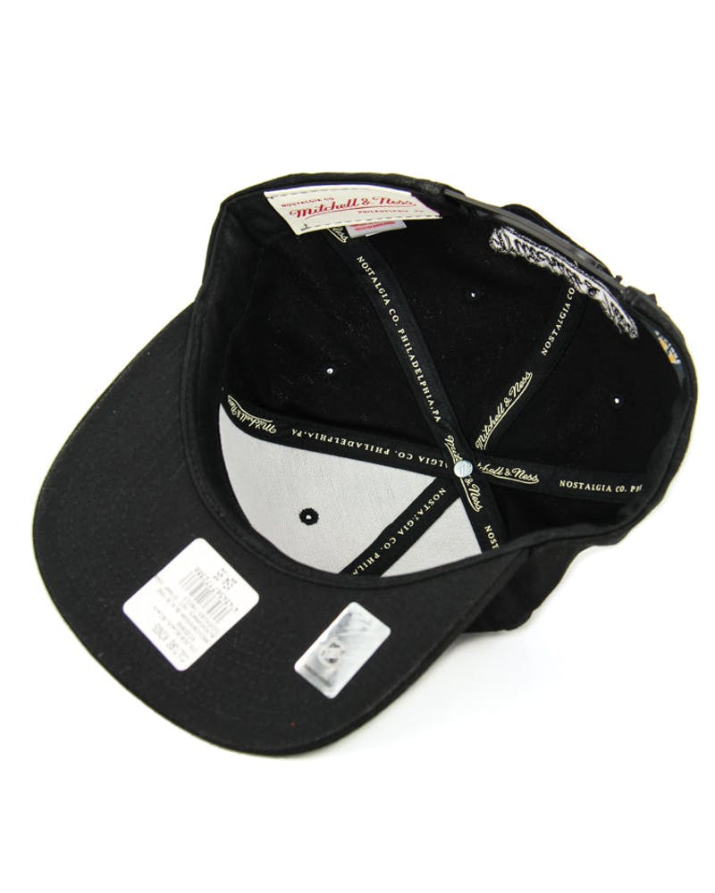 Raptors Hot Stamp Snapback Black/black