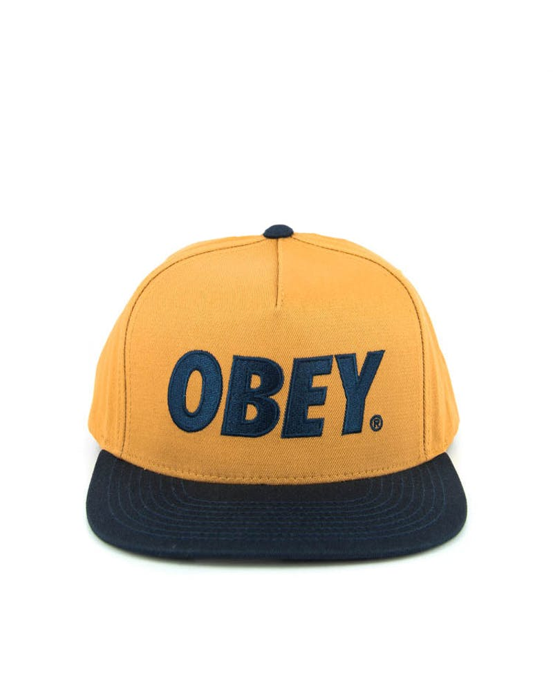 the City Snapback 2 Sand/navy