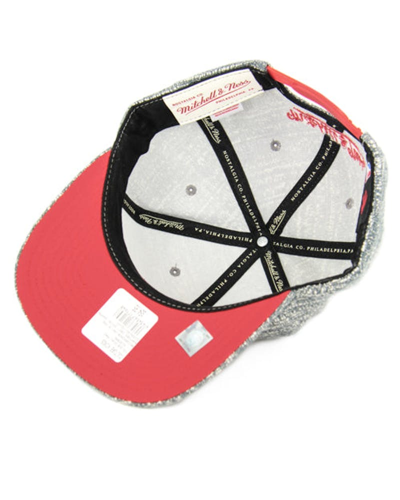Raptors Grey Noise Snapback Grey/red