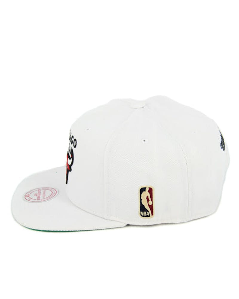 Bulls Team Logo Snapback White/red