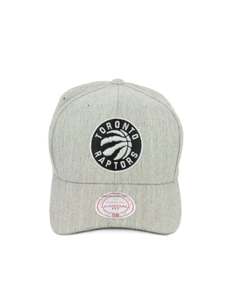Raptors 110 Black Logo Snapback Grey